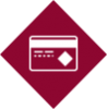 credit card lnb icon